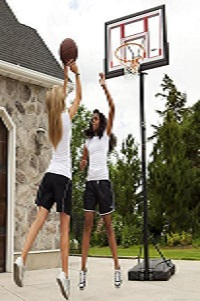 lifetime-90491-portable bb hoop